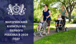 указ президента на материнский капитал в 2020